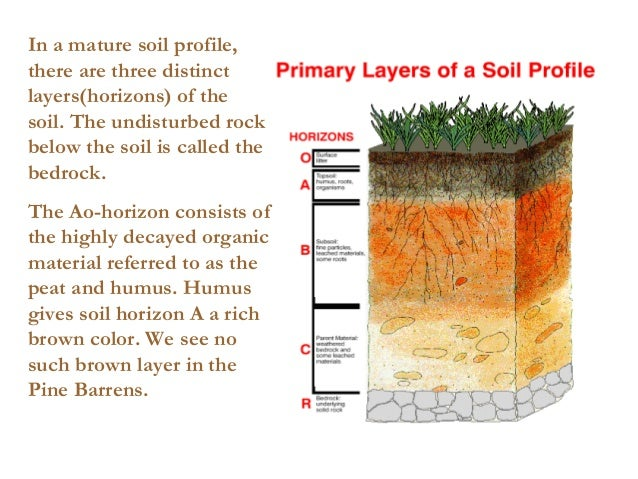 Soil lecture for 6 layers of soil