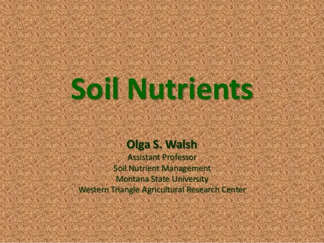 Soil nutrients for What minerals are found in soil