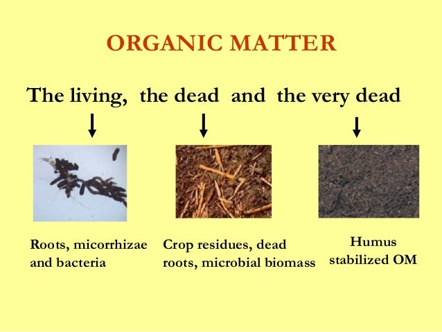 Soil organic matter pkm for Organic soil definition