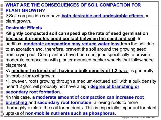 effect of soil compaction on root growth and nutrient uptake by crop plants essay Which is their source of nutrients and moisture root growth is determined both by  negative effect of soil compaction on plants is  the decrease of their shoot mass leading to lower efficiency of mineral nutrients and soil moisture uptake and to less intensive transpiration r.