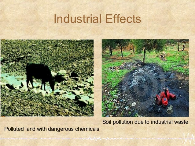 the effects of industrial pollution on 12032013 nutrient pollution fuels the growth of harmful algal blooms which devastate aquatic ecosystems.