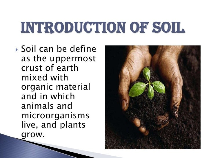 effects of soil pollution in points