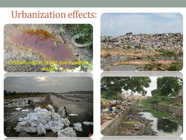 soil pollution and soil waste management Soil environmental management systems for  out a homogenous management of soil pollution largely relies  on the management of waste from the.