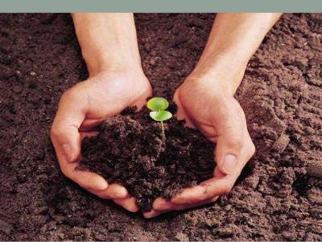 Importance Of Soil As A Natural Resource