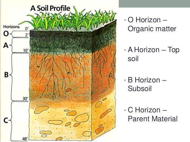 Soil pollution for Soil horizons