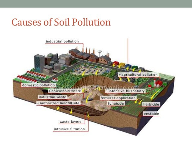 soil contamination and pollution Soil pollution: soil pollution is another form of land pollution, where the upper layer of the soil is damaged this is caused by the overuse of chemical fertilizers, soil erosion caused by running water and other pest control measures this leads to loss of fertile land for agriculture, forest cover, fodder patches for grazing etc.