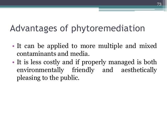 treatment of soil pollution pdf