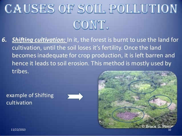 Soil Chemistry & Fertility