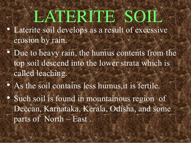 Soil ppt for What is found in soil