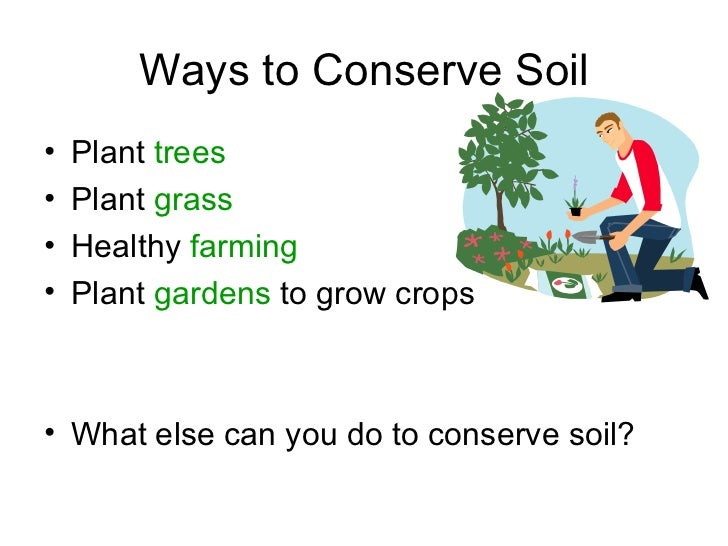 Soil ppt 1 1 for Soil information for kids
