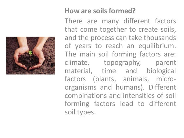 what is considered the most important factor in soil formation