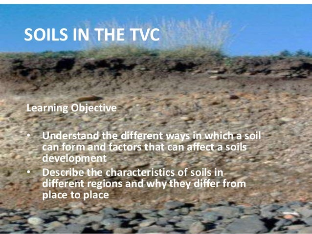 SOILS IN THE TVC Learning Objective • Understand the different ways in which a soil can form and factors that can affect a...