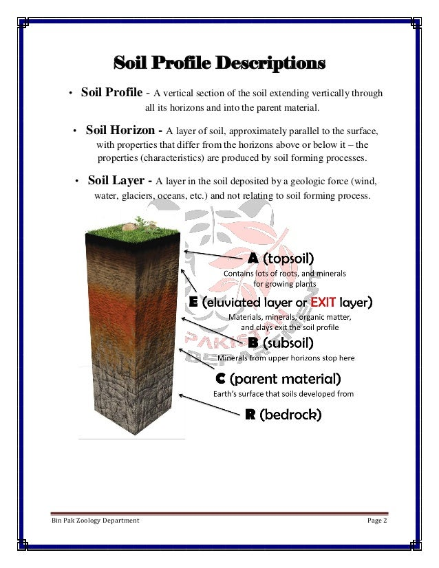 Soil profile for Soil zoology