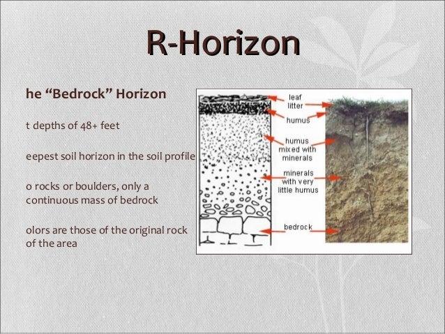 Soil profile – Soil Profile Worksheet