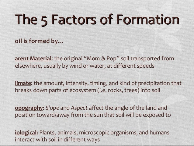 5 factors of soil formation We discuss how soil is formed and what factors affect its properties.