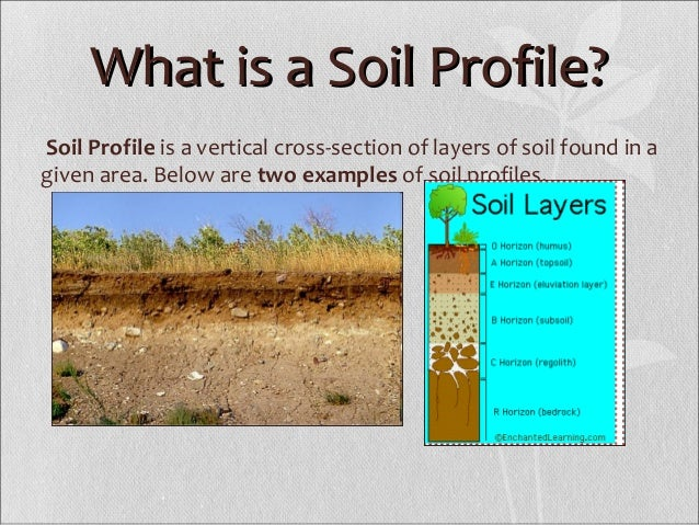Soil profile for What is the origin of soil