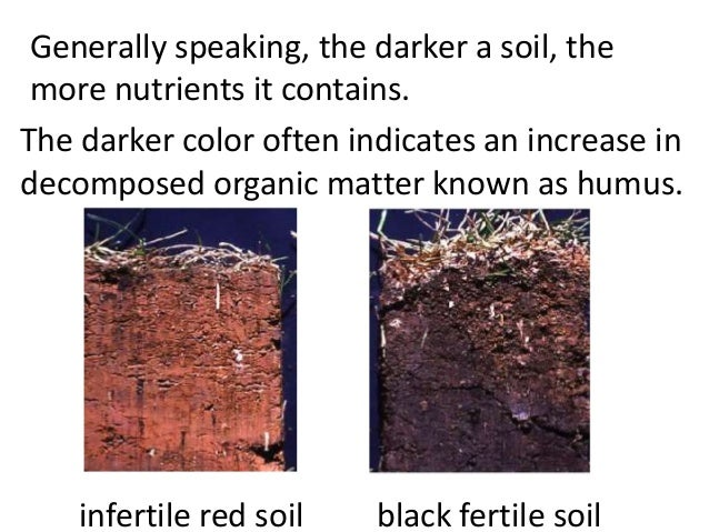 Properties of Clay Soil