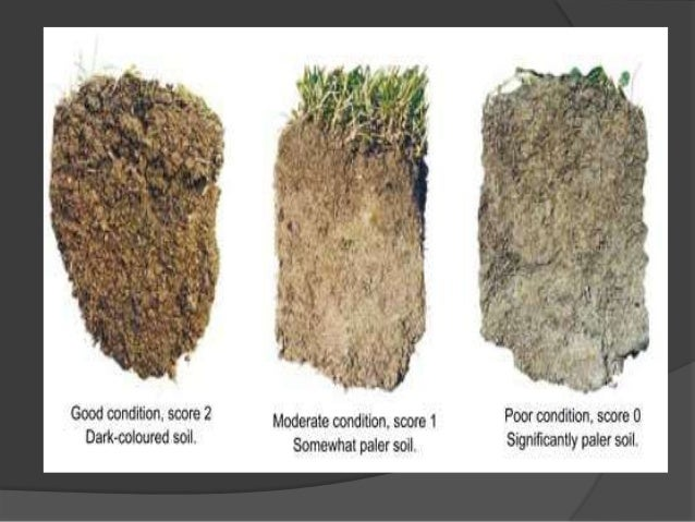 Soil properties and for 5 different types of soil