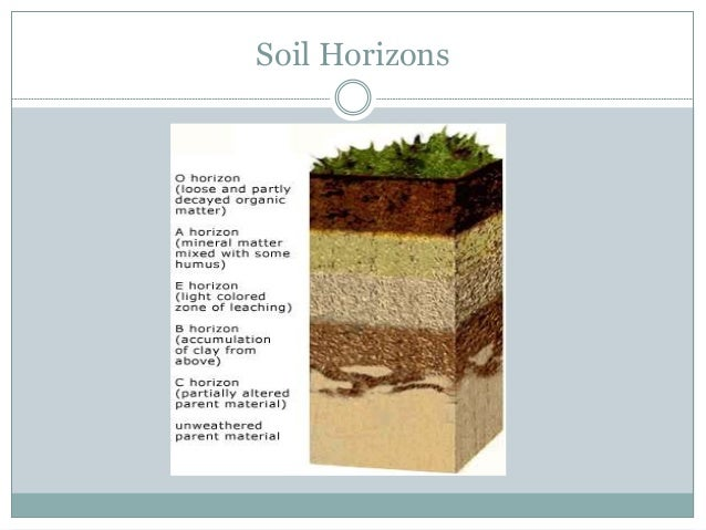 Soil resources for Soil horizons