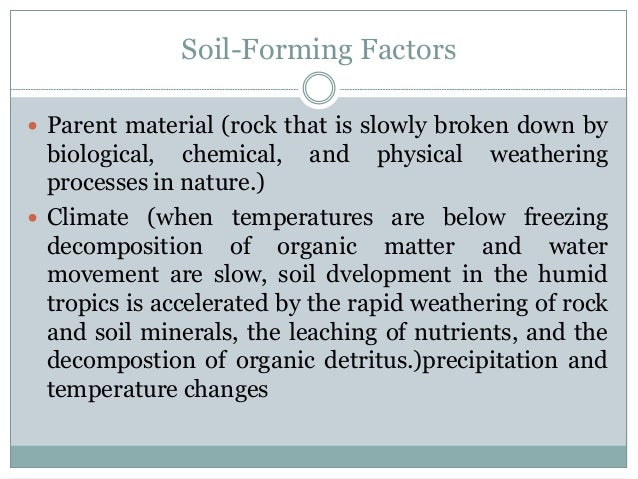 Soil resources for Soil forming factors