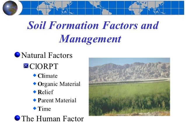 Soils for Soil forming factors