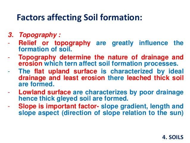 Soils for Explain the formation of soil