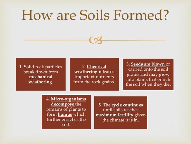 Soils for What is soil made from