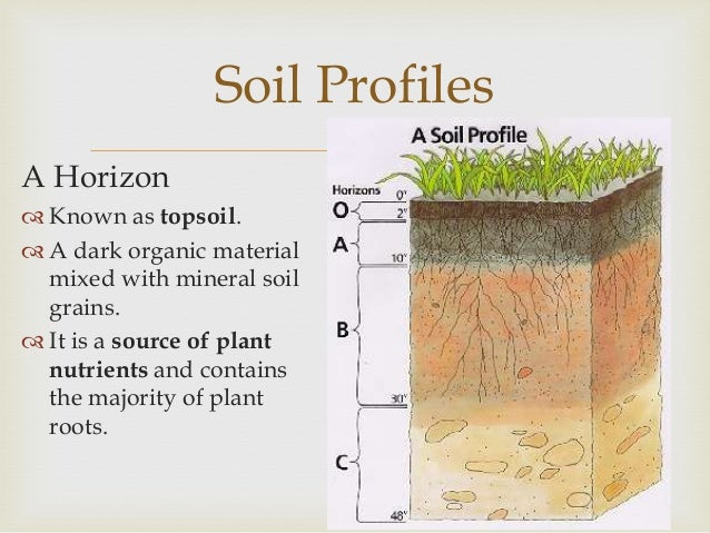 Soils for What is soil definition