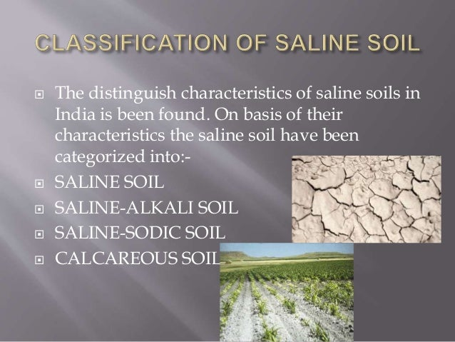 Soil salinity in india for What are soil characteristics