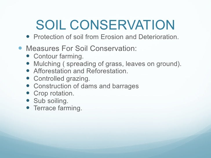 essay about soil Our depot contains over 15,000 free essays read our examples to help you be a better writer and earn better grades.