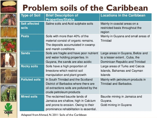 Status of soil resources in the caribbean and experiences for What type of resource is soil