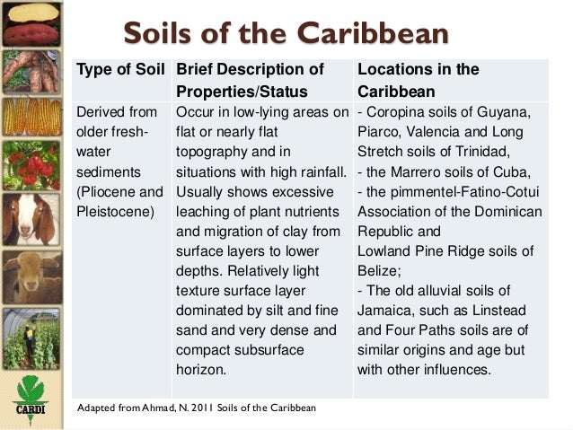 Status of soil resources in the caribbean and experiences for What is soil resources