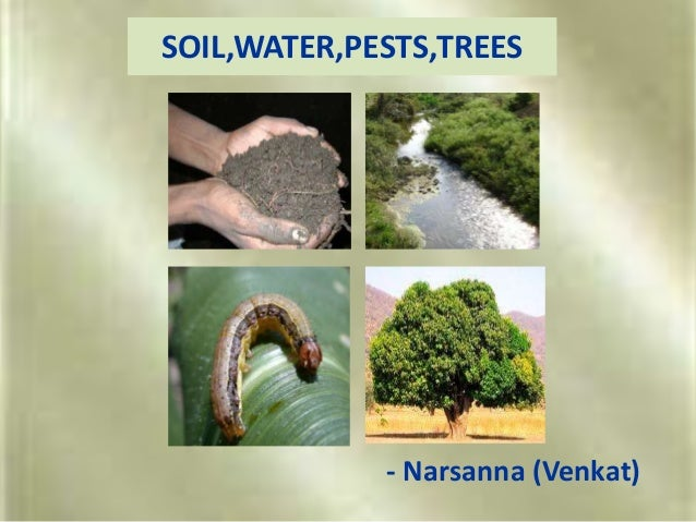 SOIL,WATER,PESTS,TREES - Narsanna (Venkat)