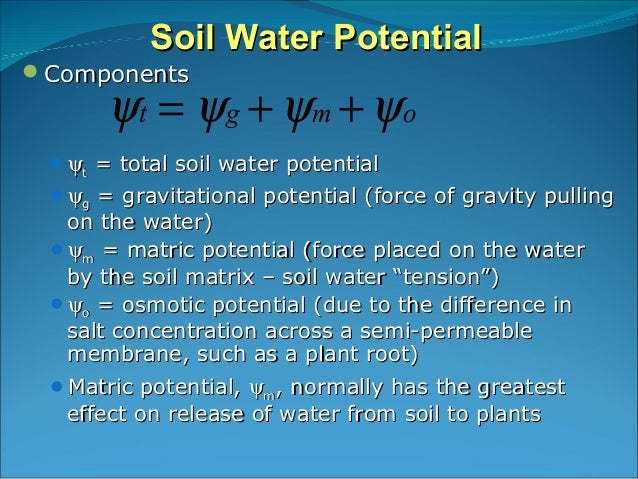 soil water plant relationships