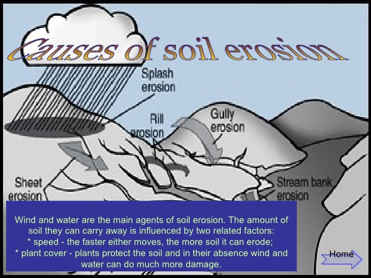 Soil erosion causes of soil erosion wind and water sciox Images
