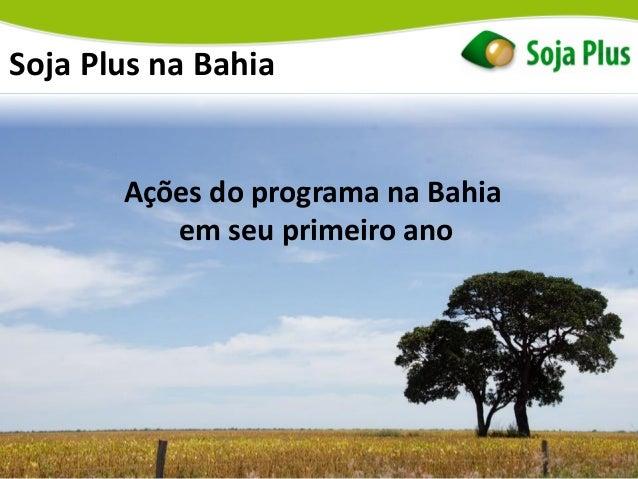 Soja Plus na Bahia Ações do programa na Bahia em seu primeiro ano