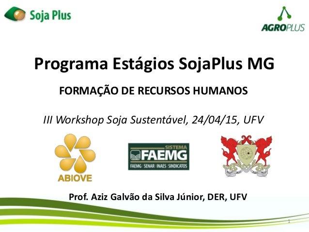 1 Programa Estágios SojaPlus MG Prof. Aziz Galvão da Silva Júnior, DER, UFV FORMAÇÃO DE RECURSOS HUMANOS III Workshop Soja...