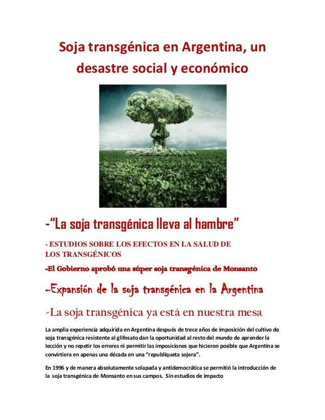 """Soja transgénica en Argentina, un desastre social y económico -""""La soja transgénica lleva al hambre"""" - ESTUDIOS SOBRE LOS ..."""