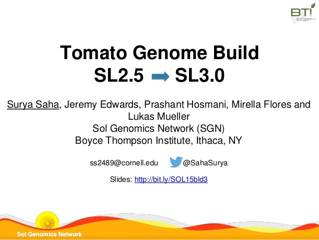 Tomato Genome Build SL2.5 SL3.0 Surya Saha, Jeremy Edwards, Prashant Hosmani, Mirella Flores and Lukas Mueller Sol Genomic...