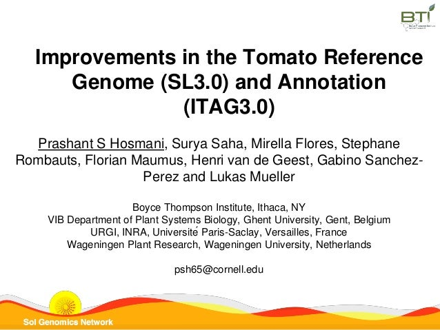 Improvements in the Tomato Reference Genome (SL3.0) and Annotation (ITAG3.0) Prashant S Hosmani, Surya Saha, Mirella Flore...