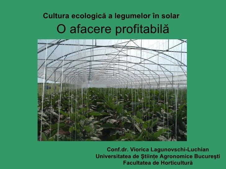 Cultura ecologică a legumelor în solar   O afacere profitabilă Conf.dr.   Viorica Lagunovschi-Luchian Universitatea de Şti...