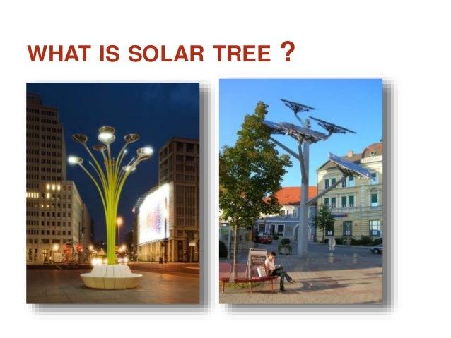 Solar Tree Power Point Presentation