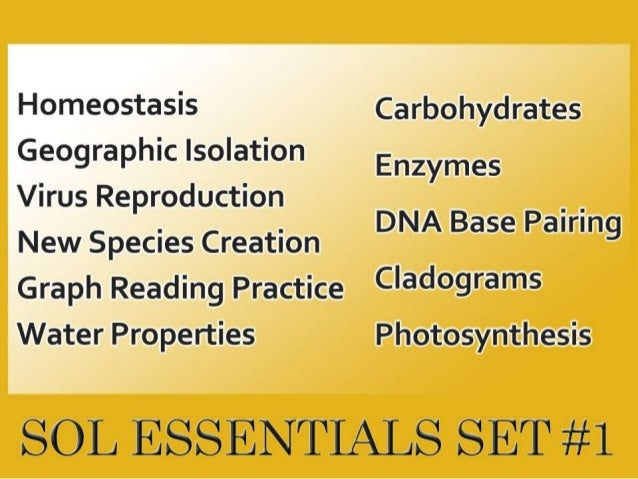 SOL Essentials Set #1