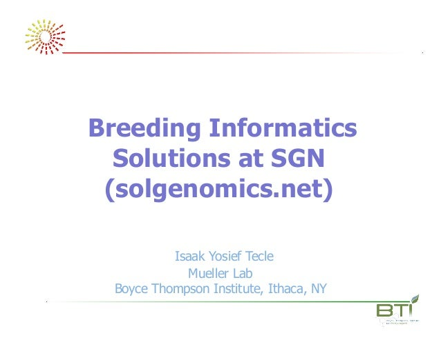 Breeding Informatics Solutions at SGN (solgenomics.net) Isaak Yosief Tecle Mueller Lab Boyce Thompson Institute, Ithaca, NY