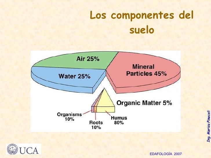 Los componentes del suelo