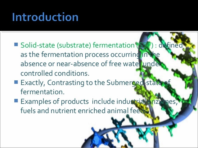 submerged and solid state fermentation Download free full-text of an article comparison of solid substrate and submerged fermentation for chitosan production by aspergillus niger.