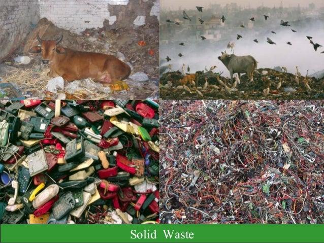 Seminar Presentation Ppt On Solid Waste Management