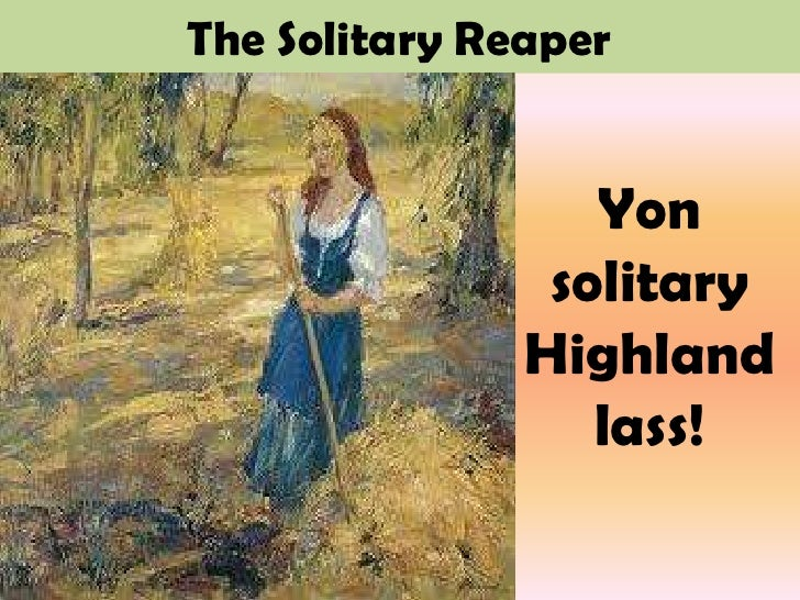 ppt presentation on the solitary reaper