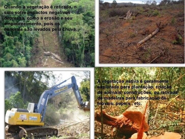 QUEIMADAS:As queimadas retiram toda a cobertura vegetal eprejudicam o solo, pois acabam matando os nutrientese microrganis...