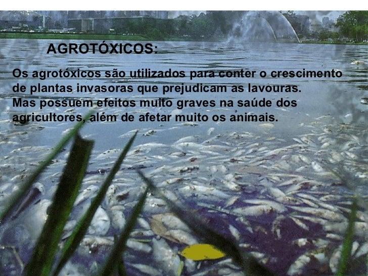 Com a infiltração dos agrotóxicos, oslençóis freáticos podem sercontaminados, tornando a águaimprópria para o consumo.